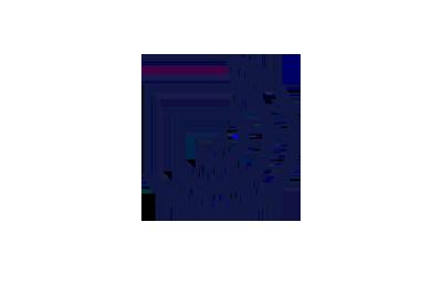 Fordione-logo-400×260